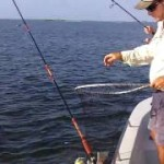 Catching Redfish with Capt Frankie